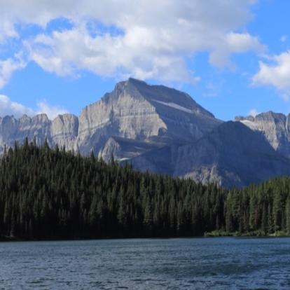Montana cover image