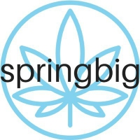 Springbig Logo Icon