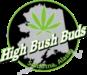 High Bush Buds 2x