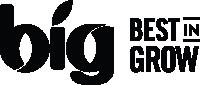BIG Logo 01
