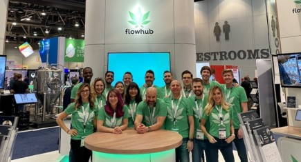 Cannabis marketing feature image large