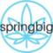 Logo-springbig
