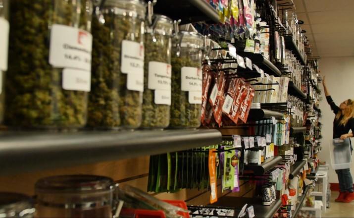 loss prevention cannabis dispensary