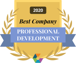 Best professional development 2020 small branded
