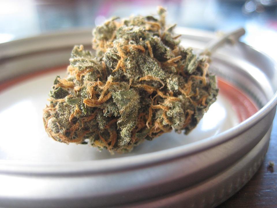 420-cannabis